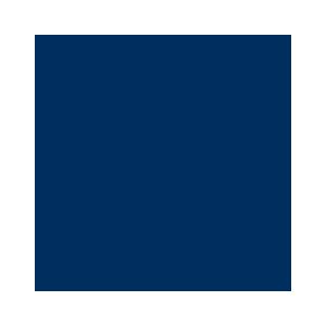 The Air Force Association Logo